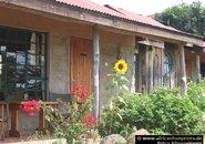 Gästehäuser in Kenia: Frontansicht mit Sonnenblume