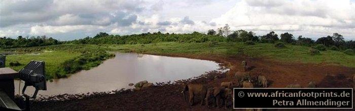 Aberdares: The Ark Wasserstelle