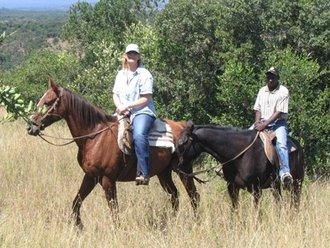 Pferdesafari: Geführte Tour