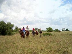 Safari on a horse