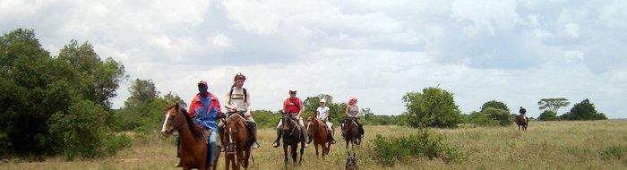 Horse back riding Safari
