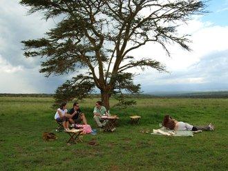 Safari Solio: Picknick unter der Akazie