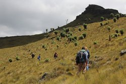 Auf dem Weg zum Gipfel des Le Satima