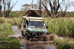 Safari mit dem Geländewagen