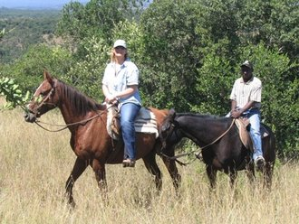 Horse Safari: Guided Tour